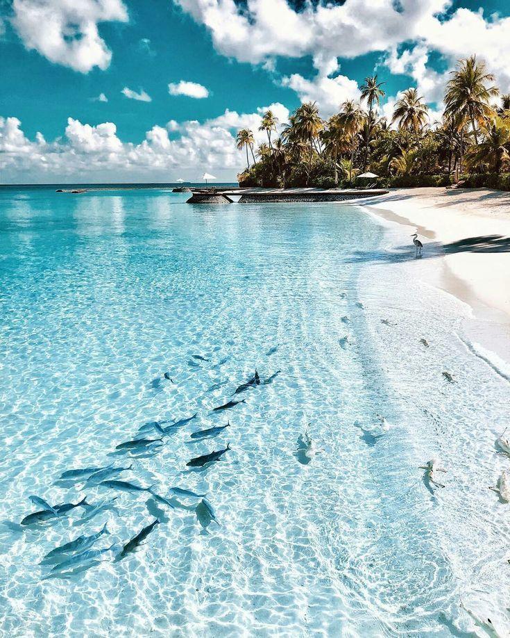 Halaveli Island, Maldives #travel