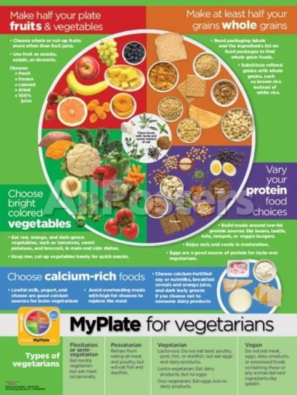 My Plate for Vegetarians Poster Prints at AllPosters_com
