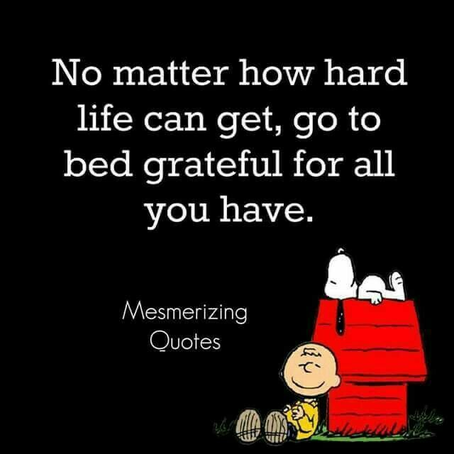 No matter how hard life can get, go to bed grateful for all you have