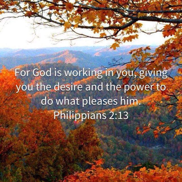 Philippians 2_13 For God is working in you, giving you the desire and the power to do what pleases him_ _ New Living Translation (NLT) _ Download The Bible App Now